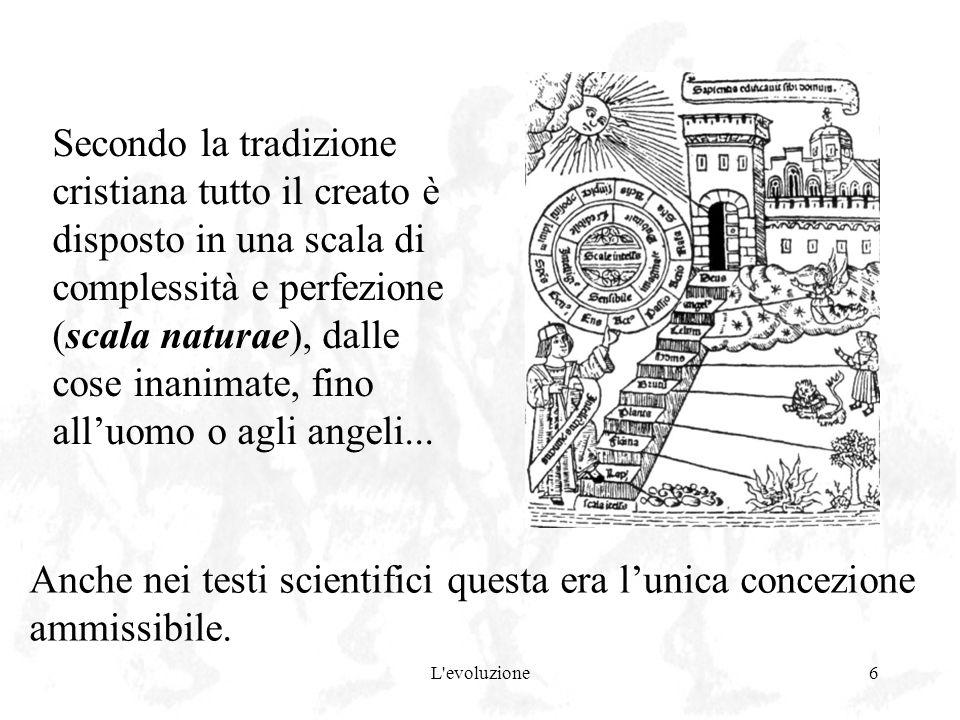 L'evoluzione6 Secondo la tradizione cristiana tutto il creato è disposto in una scala di complessità e perfezione (scala naturae), dalle cose inanimat