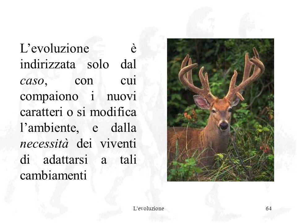 L'evoluzione64 Levoluzione è indirizzata solo dal caso, con cui compaiono i nuovi caratteri o si modifica lambiente, e dalla necessità dei viventi di