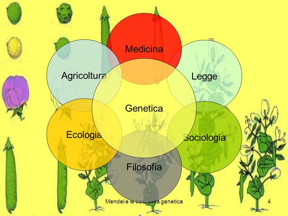 Mendel e le basi della genetica4 Legge Medicina Agricoltura Sociologia Filosofia Ecologia Genetica