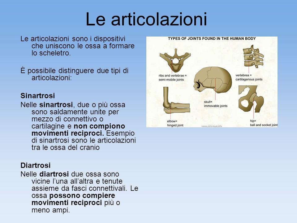 Le articolazioni Le articolazioni sono i dispositivi che uniscono le ossa a formare lo scheletro.