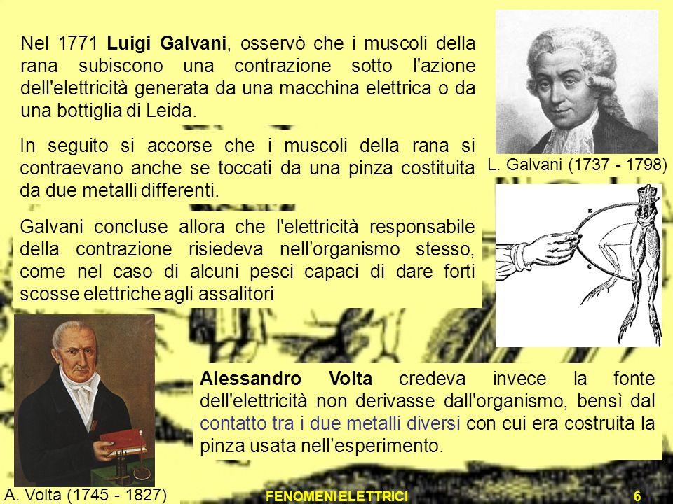 FENOMENI ELETTRICI6 Nel 1771 Luigi Galvani, osservò che i muscoli della rana subiscono una contrazione sotto l'azione dell'elettricità generata da una