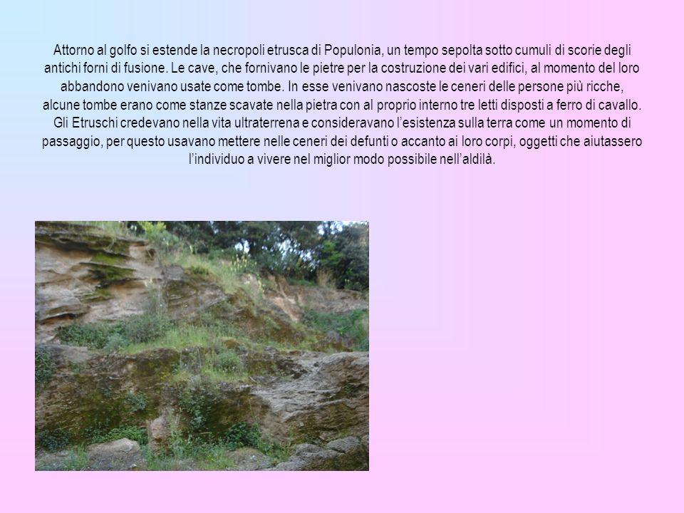 Attorno al golfo si estende la necropoli etrusca di Populonia, un tempo sepolta sotto cumuli di scorie degli antichi forni di fusione. Le cave, che fo