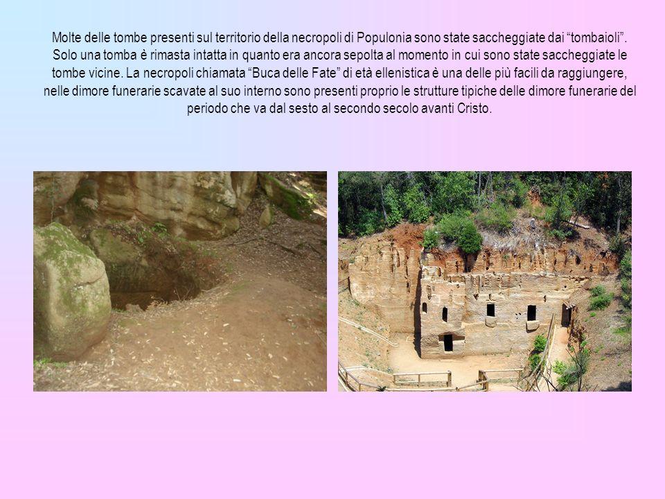 Molte delle tombe presenti sul territorio della necropoli di Populonia sono state saccheggiate dai tombaioli. Solo una tomba è rimasta intatta in quan