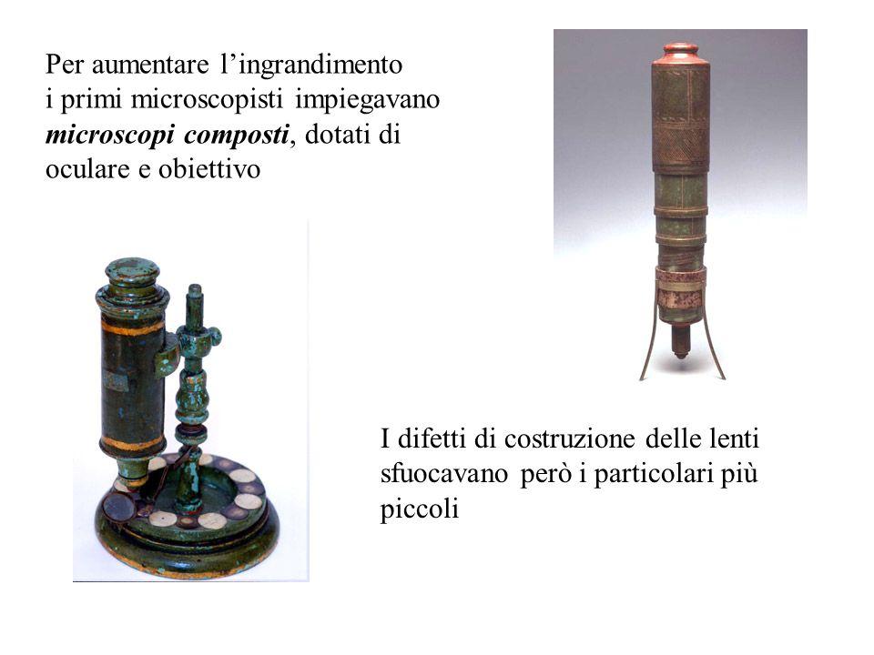 Per aumentare lingrandimento i primi microscopisti impiegavano microscopi composti, dotati di oculare e obiettivo I difetti di costruzione delle lenti