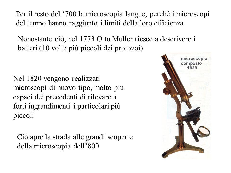 Nel 1820 vengono realizzati microscopi di nuovo tipo, molto più capaci dei precedenti di rilevare a forti ingrandimenti i particolari più piccoli Ciò