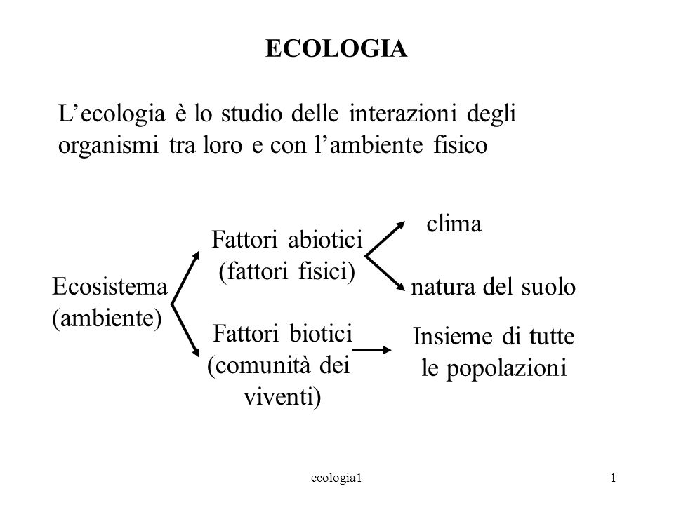 ecologia11 ECOLOGIA Lecologia è lo studio delle interazioni degli organismi tra loro e con lambiente fisico Ecosistema (ambiente) Fattori abiotici (fattori fisici) Fattori biotici (comunità dei viventi) clima natura del suolo Insieme di tutte le popolazioni