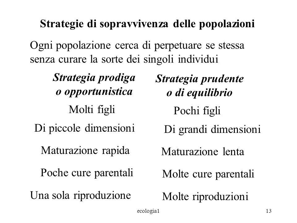 ecologia113 Strategie di sopravvivenza delle popolazioni Ogni popolazione cerca di perpetuare se stessa senza curare la sorte dei singoli individui St