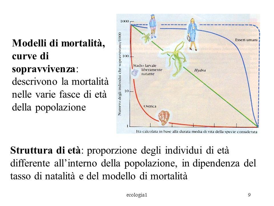 ecologia19 Modelli di mortalità, curve di sopravvivenza: descrivono la mortalità nelle varie fasce di età della popolazione Struttura di età: proporzione degli individui di età differente allinterno della popolazione, in dipendenza del tasso di natalità e del modello di mortalità