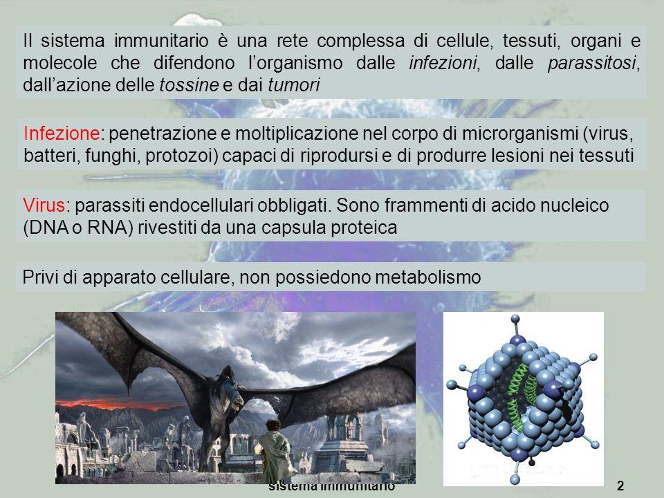 sistema immunitario2 Il sistema immunitario è una rete complessa di cellule, tessuti, organi e molecole che difendono lorganismo dalle infezioni, dall