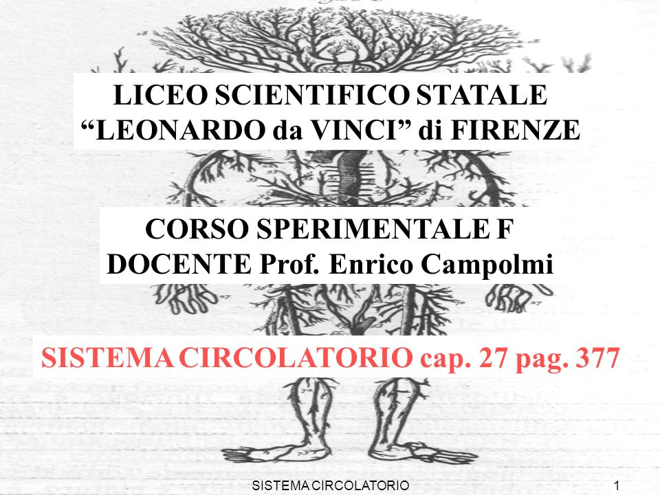 SISTEMA CIRCOLATORIO1 LICEO SCIENTIFICO STATALE LEONARDO da VINCI di FIRENZE CORSO SPERIMENTALE F DOCENTE Prof. Enrico Campolmi SISTEMA CIRCOLATORIO c
