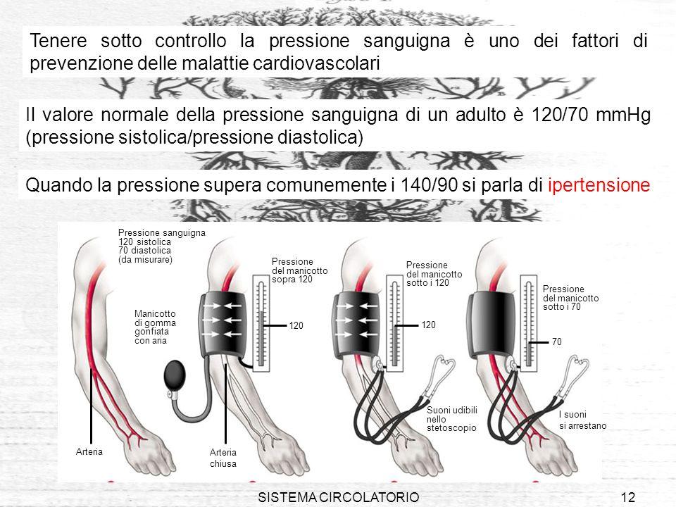 SISTEMA CIRCOLATORIO12 Il valore normale della pressione sanguigna di un adulto è 120/70 mmHg (pressione sistolica/pressione diastolica) 1 2 34 Pressi