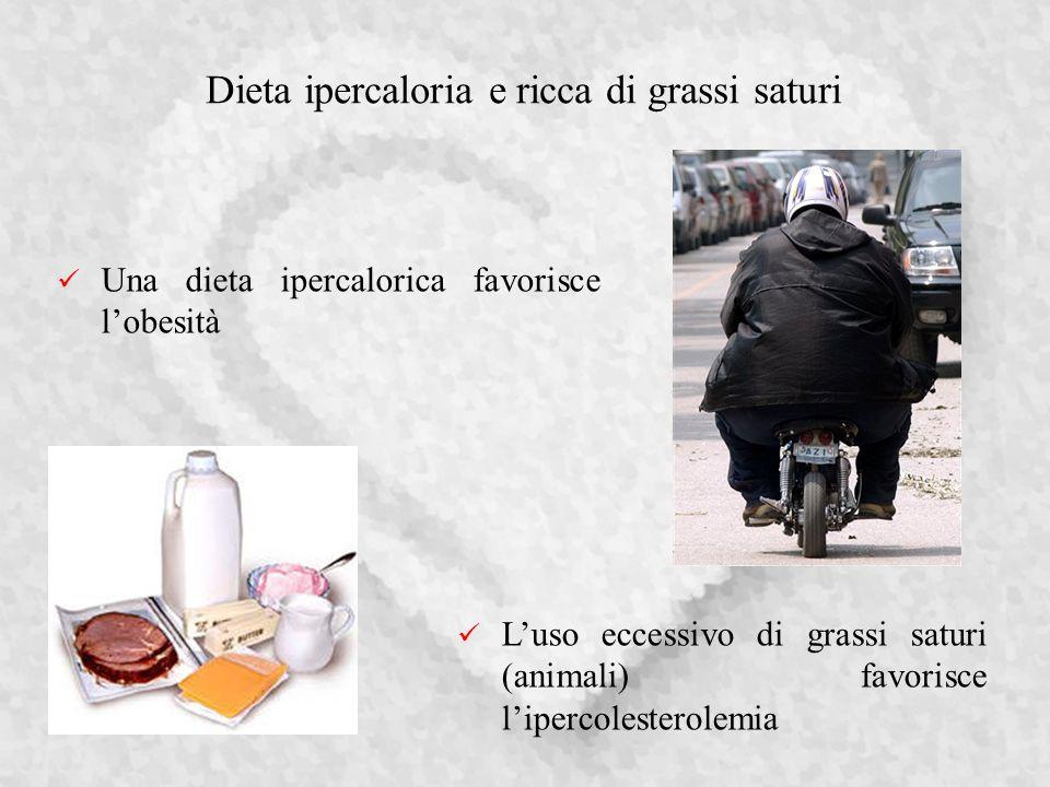 Dieta ipercaloria e ricca di grassi saturi Luso eccessivo di grassi saturi (animali) favorisce lipercolesterolemia Una dieta ipercalorica favorisce lobesità
