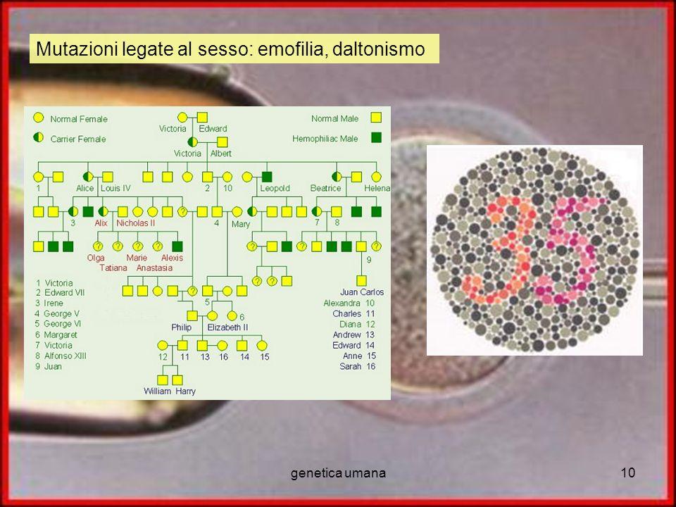 genetica umana10 Mutazioni legate al sesso: emofilia, daltonismo