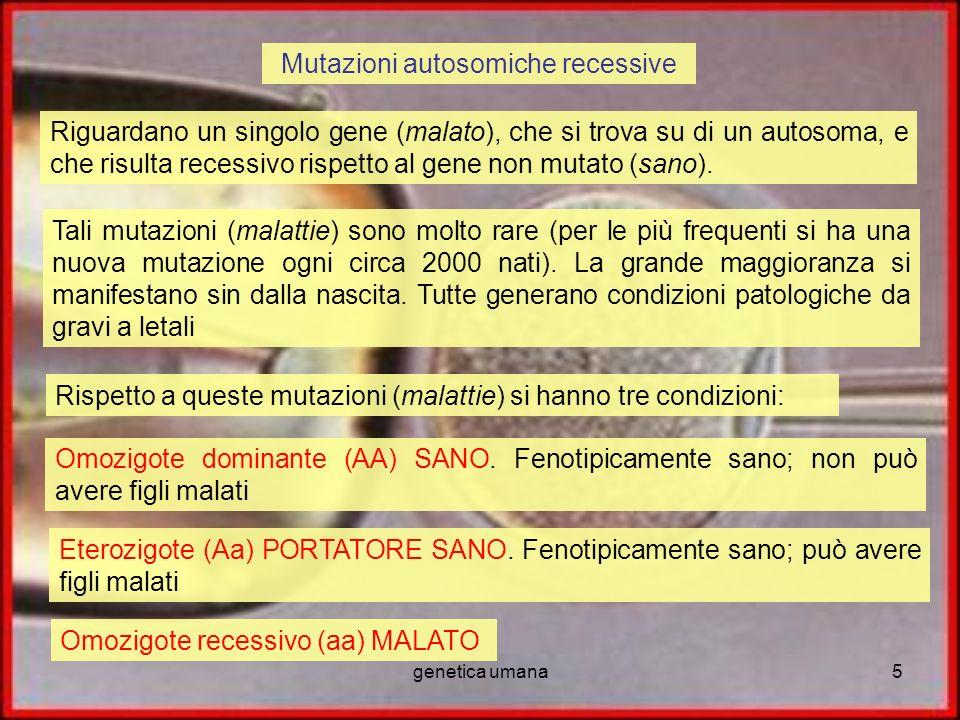 genetica umana5 Mutazioni autosomiche recessive Riguardano un singolo gene (malato), che si trova su di un autosoma, e che risulta recessivo rispetto