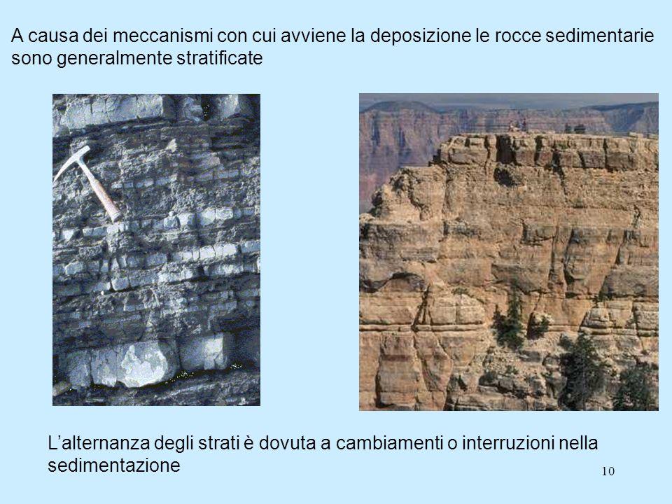 10 A causa dei meccanismi con cui avviene la deposizione le rocce sedimentarie sono generalmente stratificate Lalternanza degli strati è dovuta a cambiamenti o interruzioni nella sedimentazione