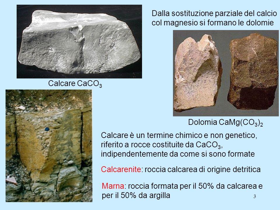 3 Calcare CaCO 3 Dalla sostituzione parziale del calcio col magnesio si formano le dolomie Dolomia CaMg(CO 3 ) 2 Calcare è un termine chimico e non genetico, riferito a rocce costituite da CaCO 3, indipendentemente da come si sono formate Calcarenite: roccia calcarea di origine detritica Marna: roccia formata per il 50% da calcarea e per il 50% da argilla