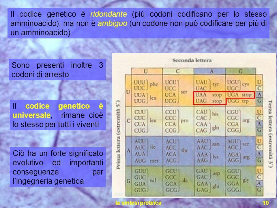 la sintesi proteica10 Il codice genetico è ridondante (più codoni codificano per lo stesso amminoacido), ma non è ambiguo (un codone non può codificar