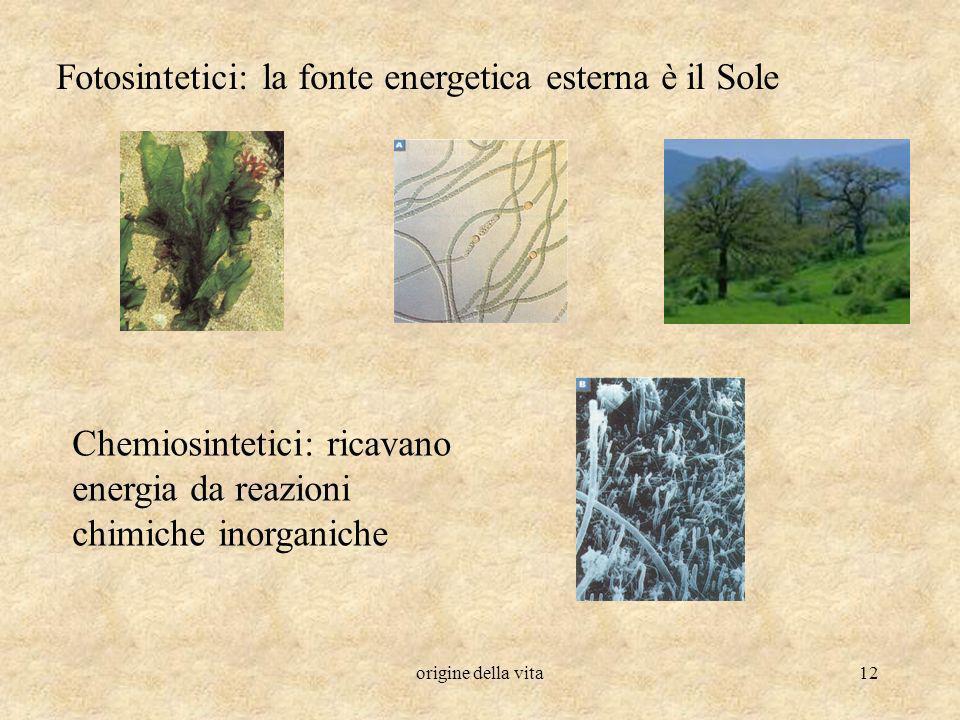 origine della vita12 Fotosintetici: la fonte energetica esterna è il Sole Chemiosintetici: ricavano energia da reazioni chimiche inorganiche