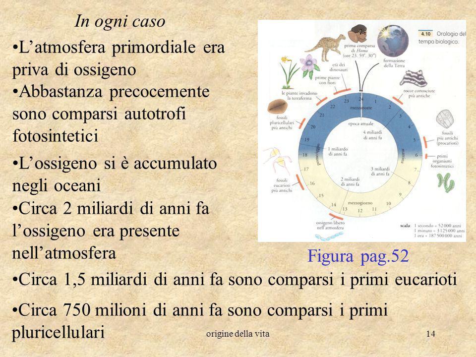 origine della vita14 In ogni caso Latmosfera primordiale era priva di ossigeno Abbastanza precocemente sono comparsi autotrofi fotosintetici Lossigeno