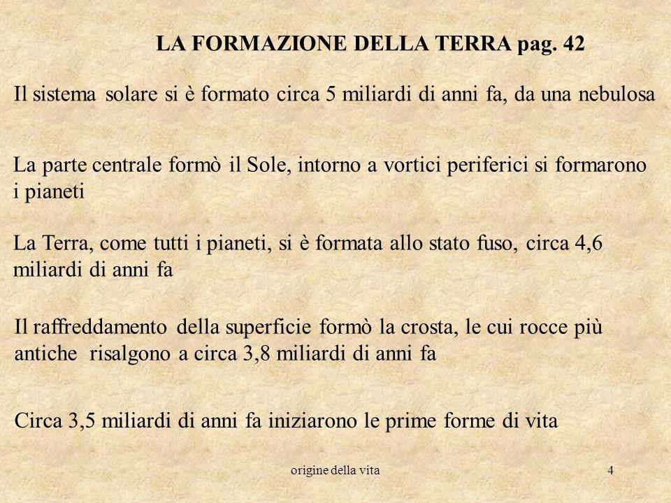 origine della vita5 LORIGINE DELLA VITA pag.