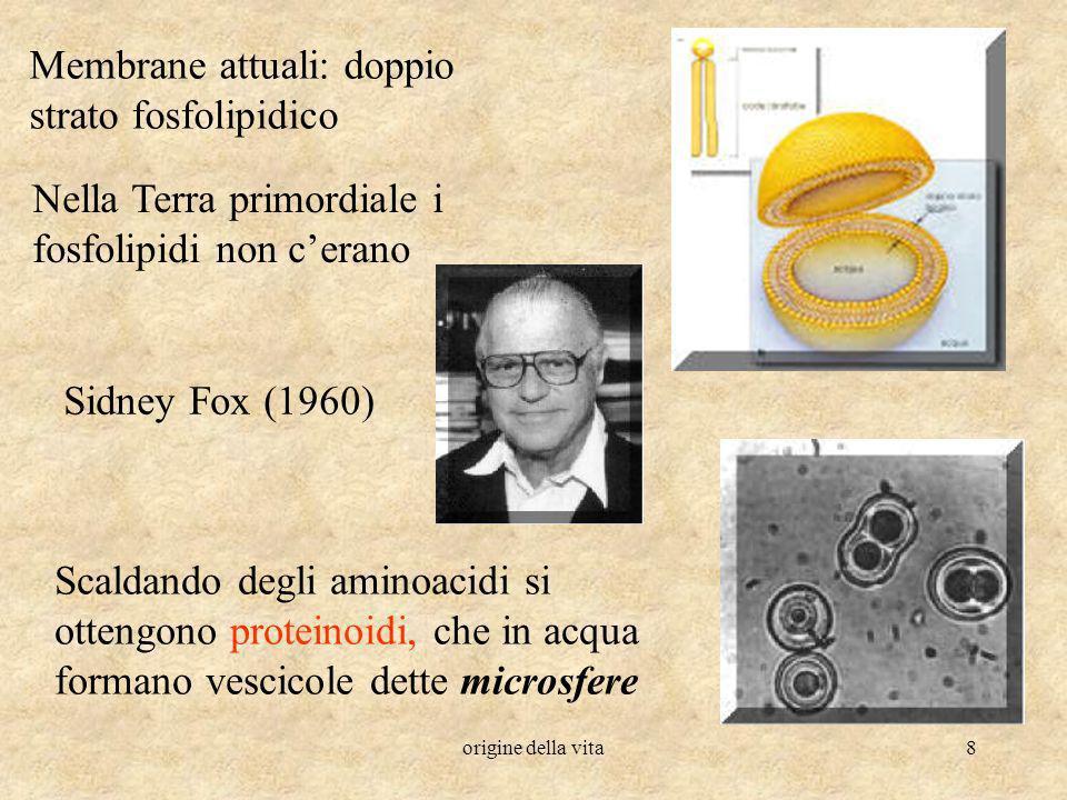 origine della vita8 Membrane attuali: doppio strato fosfolipidico Nella Terra primordiale i fosfolipidi non cerano Sidney Fox (1960) Scaldando degli a