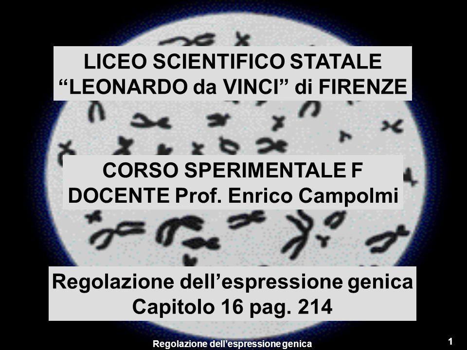 Regolazione dellespressione genica 1 LICEO SCIENTIFICO STATALE LEONARDO da VINCI di FIRENZE CORSO SPERIMENTALE F DOCENTE Prof. Enrico Campolmi Regolaz