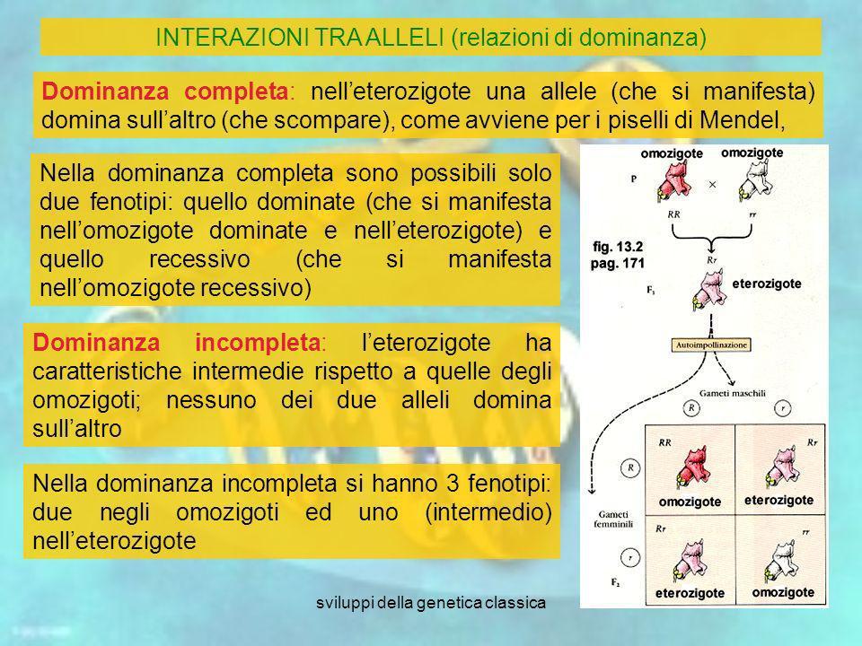 sviluppi della genetica classica5 Dominanza completa: nelleterozigote una allele (che si manifesta) domina sullaltro (che scompare), come avviene per