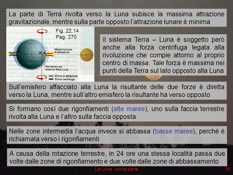 La Luna - prima parte19 Il sistema Terra – Luna è soggetto però anche alla forza centrifuga legata alla rivoluzione che compie attorno al proprio cent