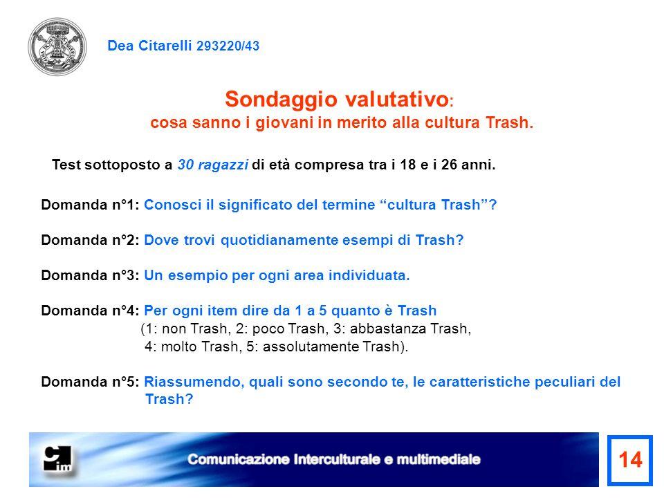 Dea Citarelli 293220/43 Sondaggio valutativo : cosa sanno i giovani in merito alla cultura Trash. Test sottoposto a 30 ragazzi di età compresa tra i 1