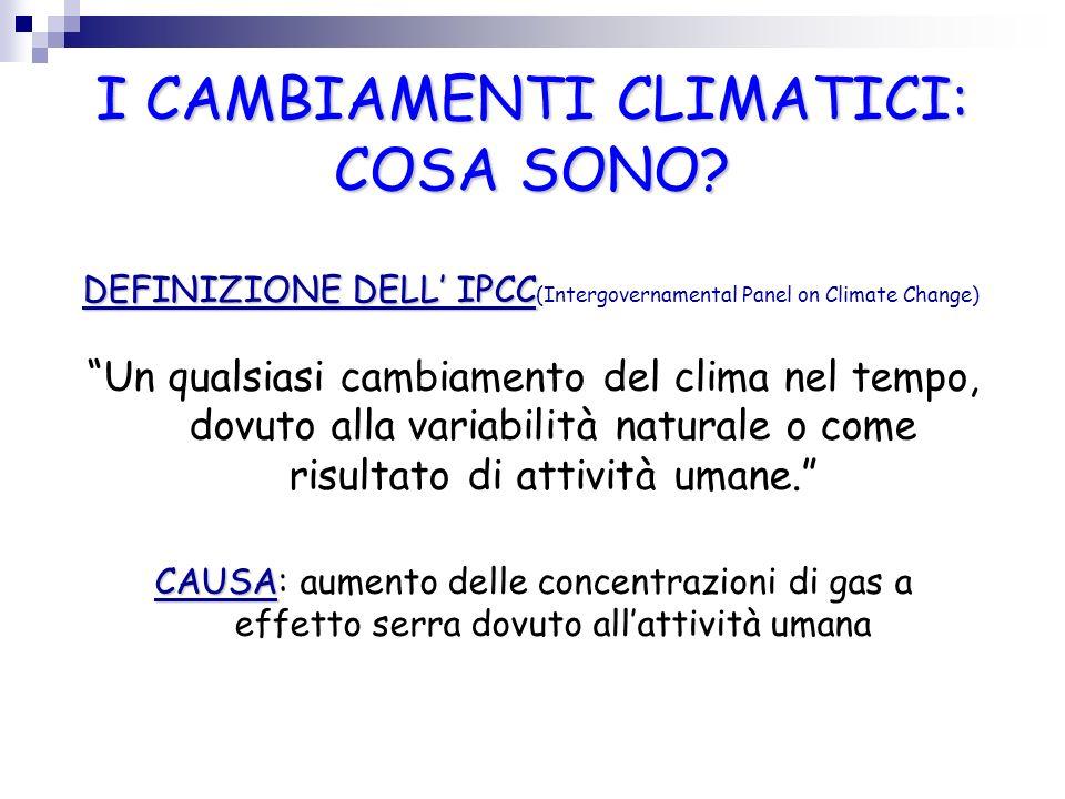 I CAMBIAMENTI CLIMATICI: COSA SONO? DEFINIZIONE DELL IPCC DEFINIZIONE DELL IPCC (Intergovernamental Panel on Climate Change) Un qualsiasi cambiamento