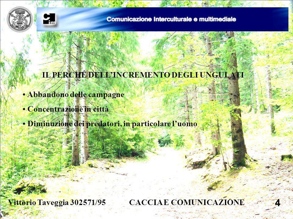 Vittorio Taveggia 302571/95 CACCIA E COMUNICAZIONE 4 IL PERCHÉ DELLINCREMENTO DEGLI UNGULATI Abbandono delle campagne Concentrazione in città Diminuzi