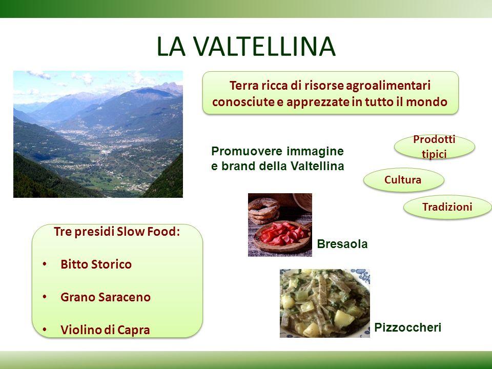 LA VALTELLINA Bresaola Pizzoccheri Terra ricca di risorse agroalimentari conosciute e apprezzate in tutto il mondo Promuovere immagine e brand della V