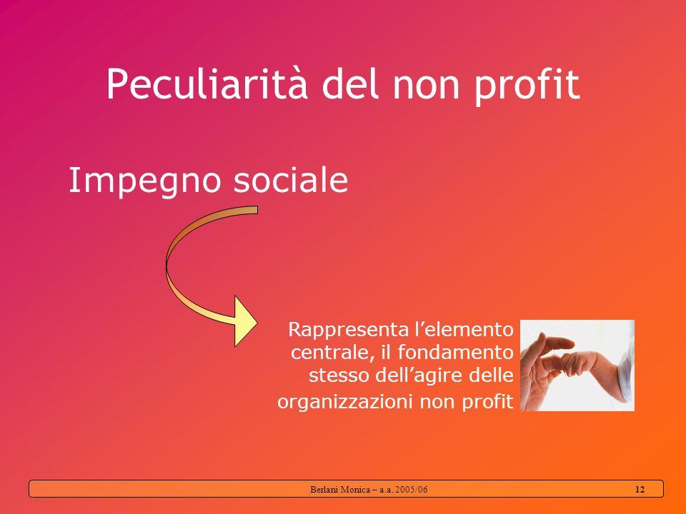 Berlani Monica – a.a. 2005/06 11 Organizzazioni non profit Enti giuridici creati con lo scopo di produrre beni o servizi il cui status non consente lo