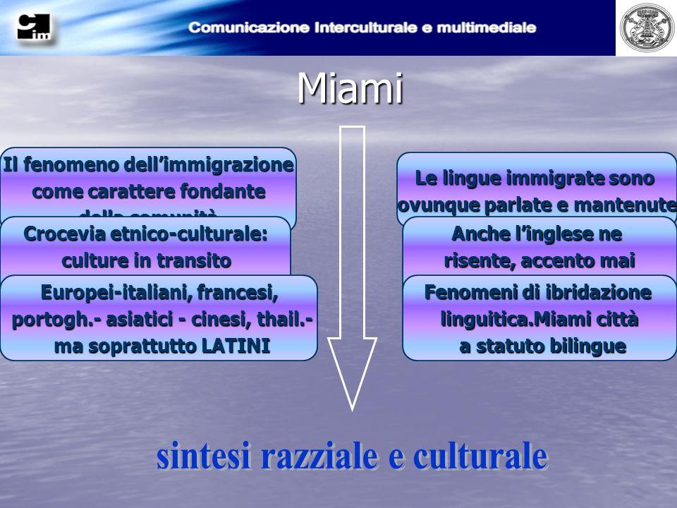 Miami Le lingue immigrate sono ovunque parlate e mantenute Anche linglese ne risente, accento mai uguale a se stesso Fenomeni di ibridazione linguisti