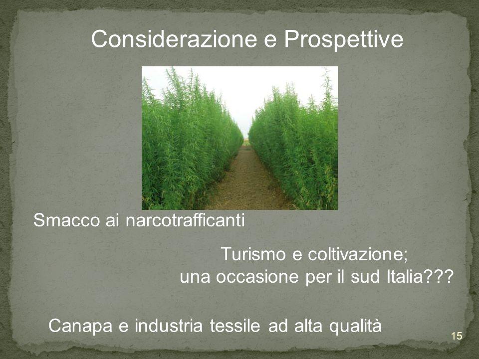 Considerazione e Prospettive Smacco ai narcotrafficanti Turismo e coltivazione; una occasione per il sud Italia??? Canapa e industria tessile ad alta