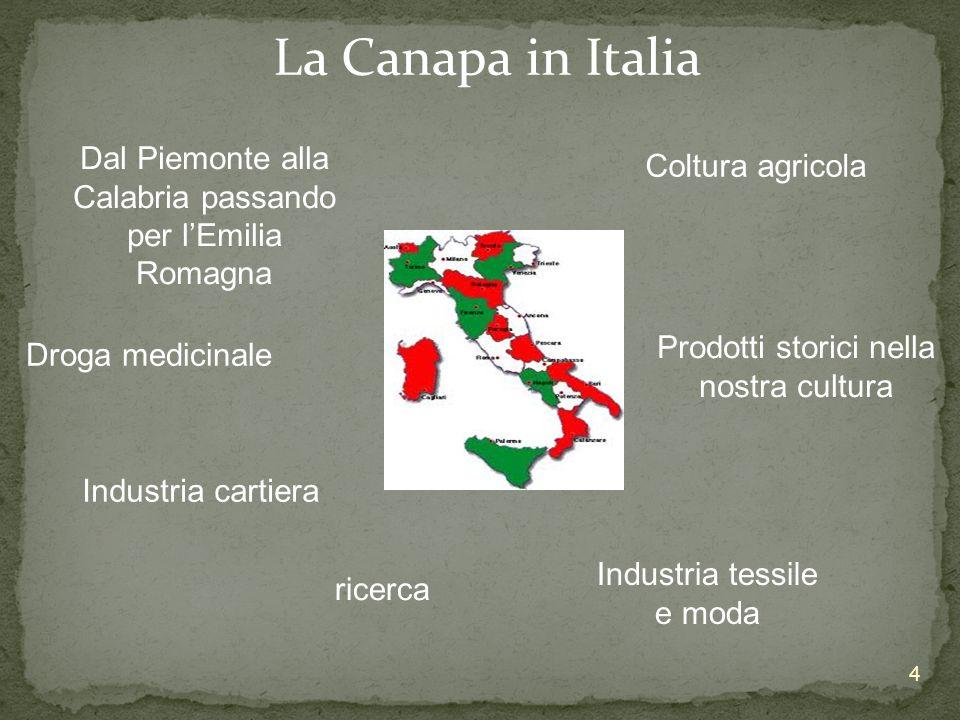 La Canapa in Italia Dal Piemonte alla Calabria passando per lEmilia Romagna Coltura agricola Droga medicinale Prodotti storici nella nostra cultura In