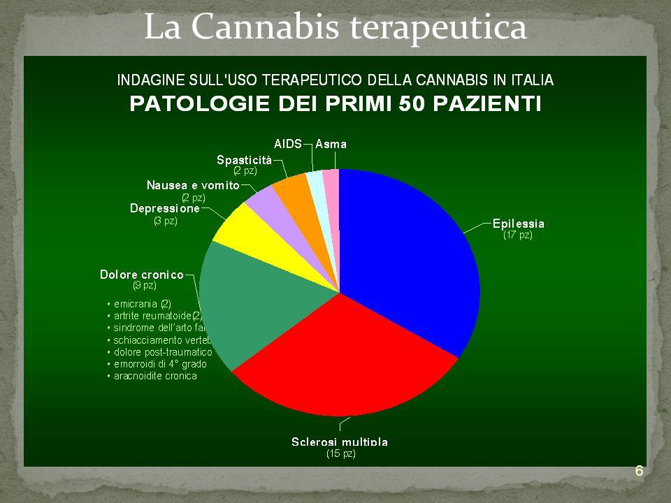Giurisprudenza Medico curante mercato Cannabis o THC sintetico??? Costi della terapia 7