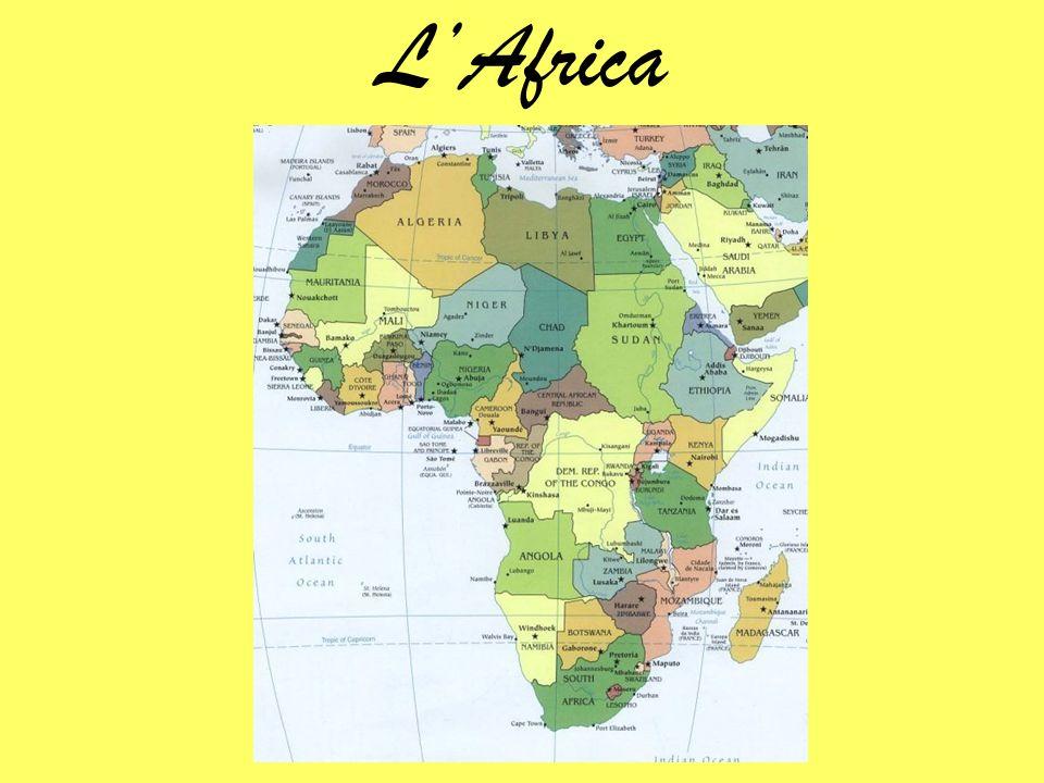 LAfrica