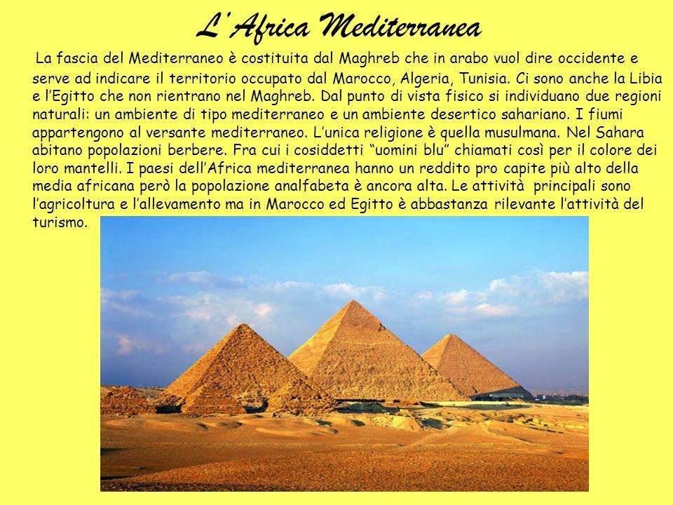 LAfrica Mediterranea La fascia del Mediterraneo è costituita dal Maghreb che in arabo vuol dire occidente e serve ad indicare il territorio occupato d