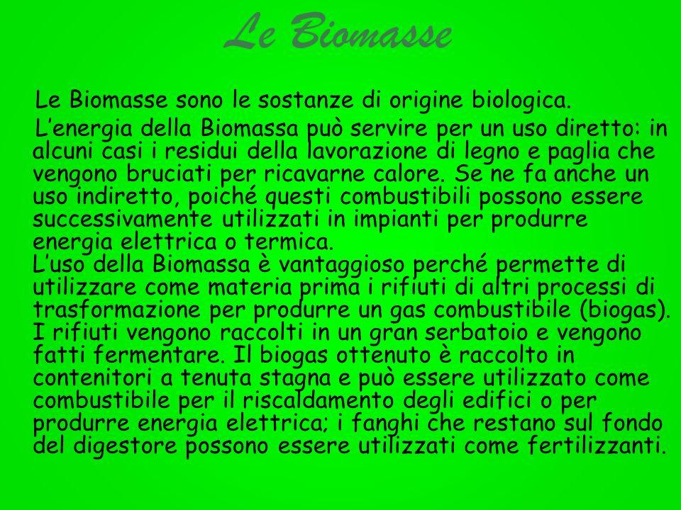 Le Biomasse Le Biomasse sono le sostanze di origine biologica. Lenergia della Biomassa può servire per un uso diretto: in alcuni casi i residui della
