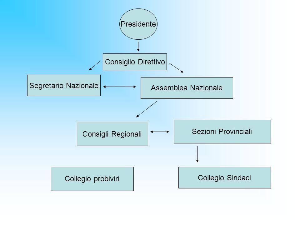 Presidente Consiglio Direttivo Segretario Nazionale Assemblea Nazionale Consigli Regionali Sezioni Provinciali Collegio Sindaci Collegio probiviri