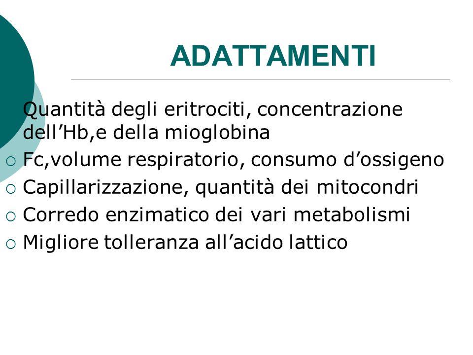 ADATTAMENTI Quantità degli eritrociti, concentrazione dellHb,e della mioglobina Fc,volume respiratorio, consumo dossigeno Capillarizzazione, quantità