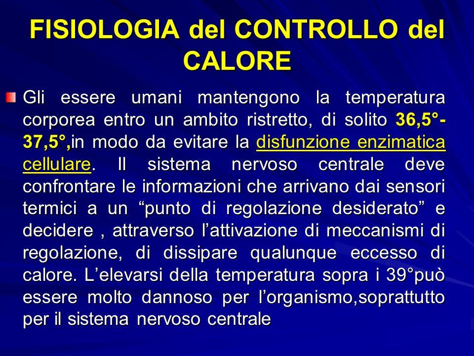 FISIOLOGIA del CONTROLLO del CALORE Gli essere umani mantengono la temperatura corporea entro un ambito ristretto, di solito 36,5°- 37,5°,in modo da evitare la disfunzione enzimatica cellulare.
