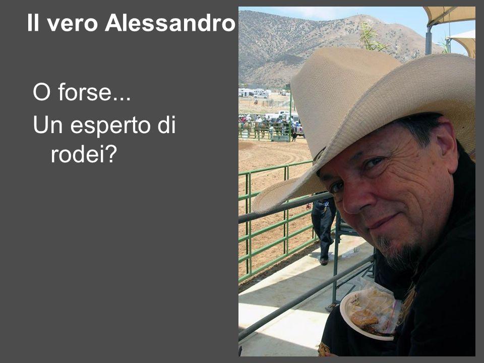 Il vero Alessandro O forse... Un esperto di rodei?