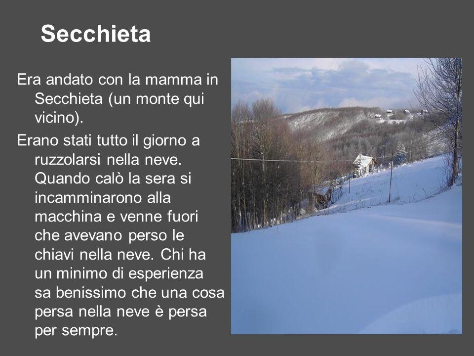 Secchieta Era andato con la mamma in Secchieta (un monte qui vicino). Erano stati tutto il giorno a ruzzolarsi nella neve. Quando calò la sera si inca