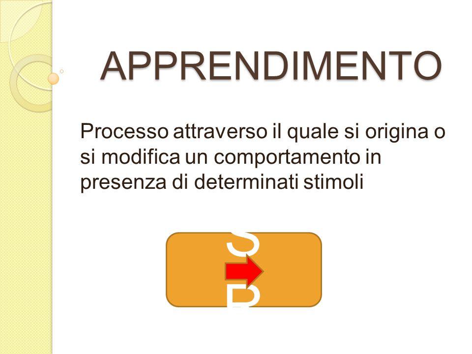 APPRENDIMENTO Processo attraverso il quale si origina o si modifica un comportamento in presenza di determinati stimoli SRSR