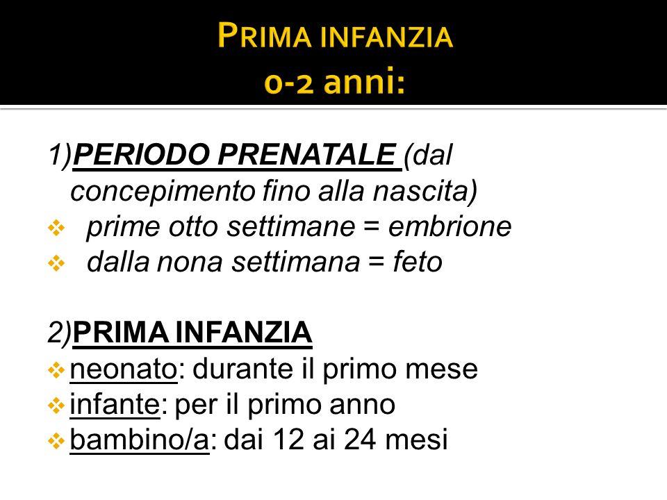 1)PERIODO PRENATALE (dal concepimento fino alla nascita) prime otto settimane = embrione dalla nona settimana = feto 2)PRIMA INFANZIA neonato: durante