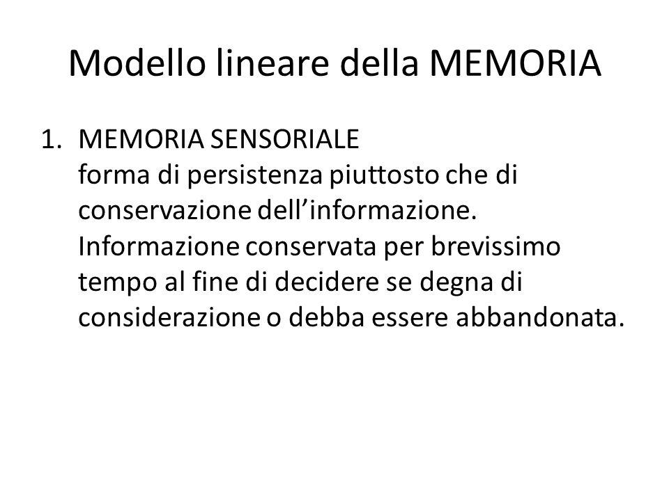Modello lineare della MEMORIA 1.MEMORIA SENSORIALE forma di persistenza piuttosto che di conservazione dellinformazione. Informazione conservata per b
