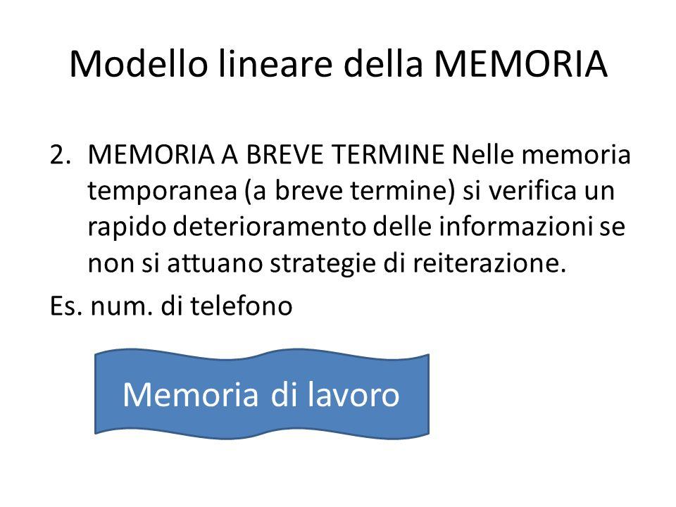 Modello lineare della MEMORIA 2.MEMORIA A BREVE TERMINE Nelle memoria temporanea (a breve termine) si verifica un rapido deterioramento delle informaz