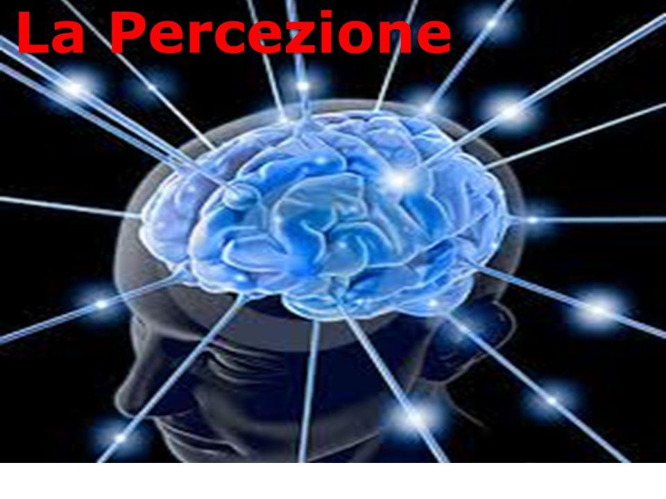 La Percezione